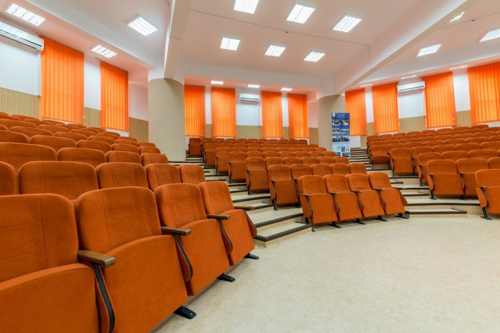 Теоретична школа Мирона Костіна, Румунія